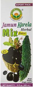 health-benefits-of-jamun-karela-herbal-juice